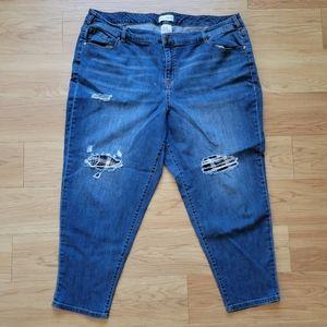 Lane Bryant Medium Wash Distressed Ripped Jeans